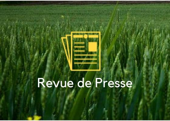 revue de presse- vendeville